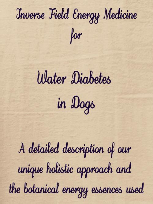 Sudarshan Kriya Yoga For Treating Type 2 Diabetes