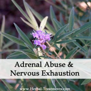 Herbal Treatment for Recovery from Adrenal, Nervous Exhaustion & Rehabilitation from Adrenal Abuse
