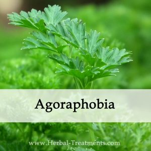 Herbal Medicine for Agoraphobia Anxiety Disorder