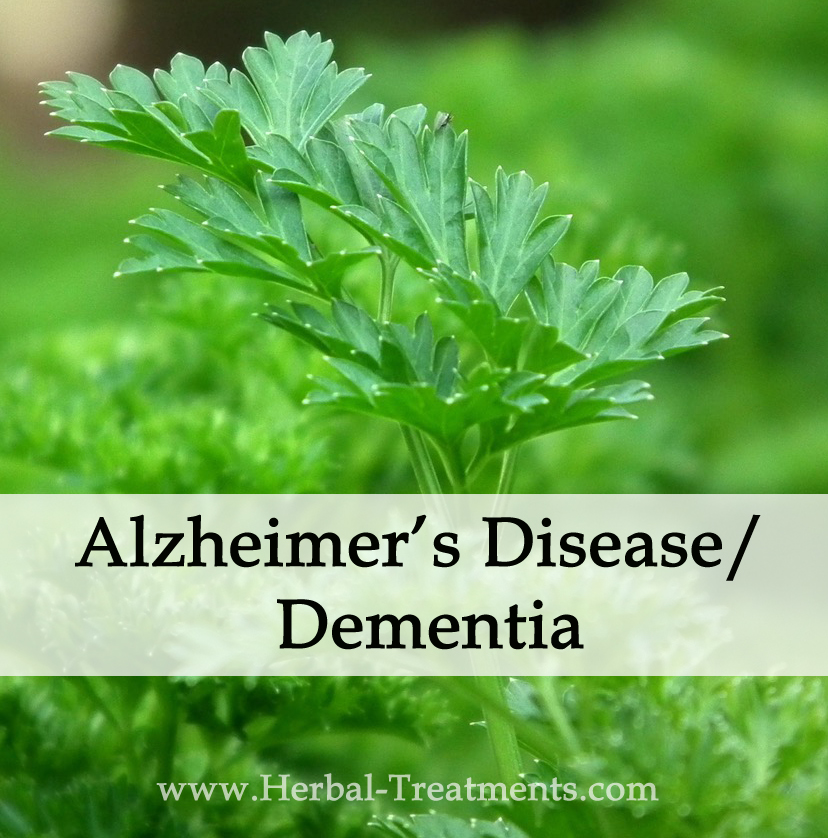 Natural Remedies For Dementia In Cats