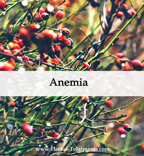Herbal Medicine for Anemia