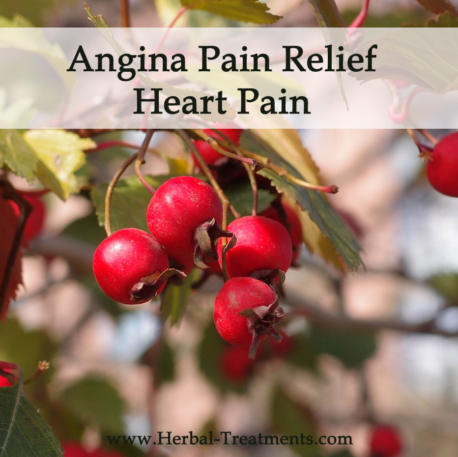 Herbal Medicine for Angina Pain Relief (Heart Pain)