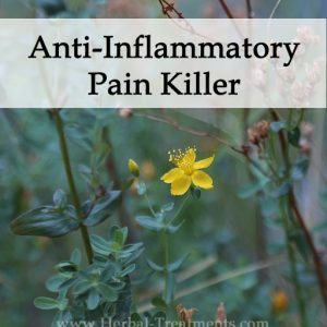 Herbal Anti-Inflammatory and Pain Killer Alternative Medicine