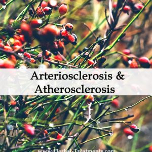 Herbal Medicine for Arteriosclerosis and Atherosclerosis