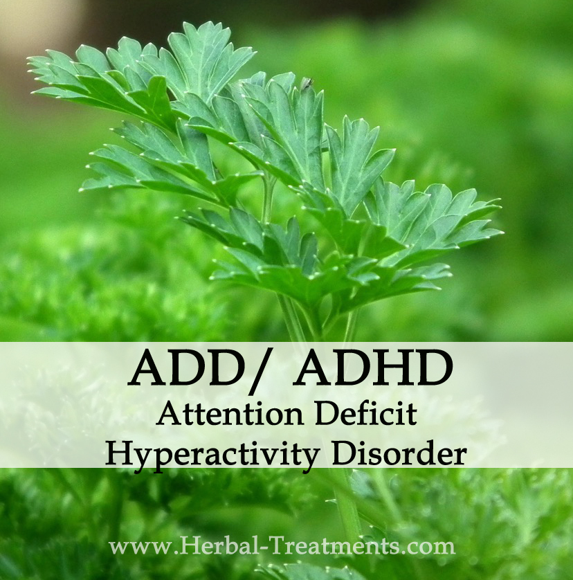 Herbal Medicine for Attention Deficit / Hyperactivity Disorder ADD/ ADHD