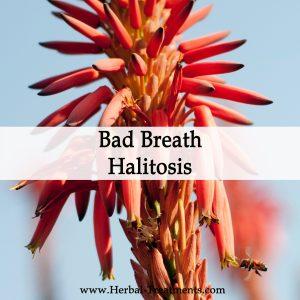 Herbal Medicine for Bad Breath or Halitosis