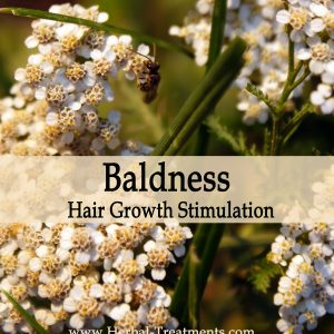 Herbal Medicine for Baldness - Hair Growth Stimulation