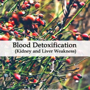 Herbal Medicine for Blood Detoxification - Kidney and Liver Weakness