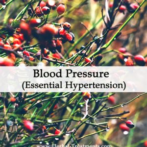 Herbal Medicine for Blood Pressure (Essential Hypertension)
