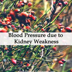 Herbal Medicine for Blood Pressure due to Kidney Weakness