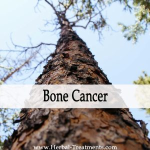 Herbal Medicine for Bone Cancer Recovery & Prevention