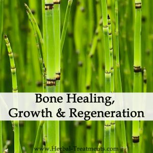 Herbal Medicine for Bone Healing, Growth & Regeneration