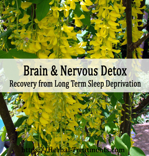 Herbs for Brain and Nervous System Toxins - Recovery from long term sleep deprivation and lack of brain oxygenation