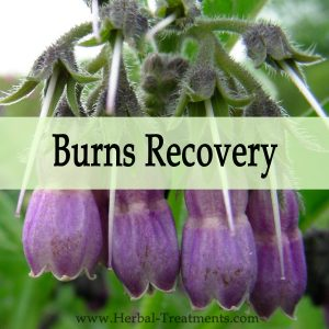 Herbal Medicine for Recovery from Burns