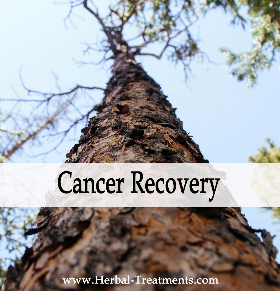 Herbal Treatments for Cancer Recovery and Prevention