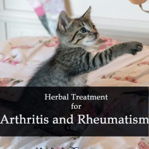 Herbal Treatment for Arthritis and Rheumatism in Cats
