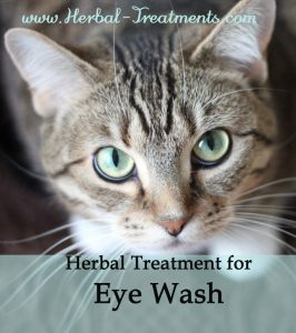 Herbal Treatment for Eye Wash for Cats