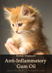 Herbal Treatment of Gum Disease or Gingivitis for Cats