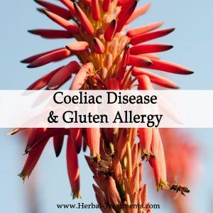 Herbal Medicine for Celiac Disease & Gluten Allergy
