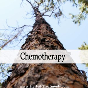 Herbal Medicine for Chemotherapy Recovery & Side-Effects