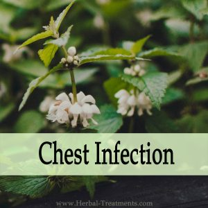 Herbal Medicine for Severe Chest Infection