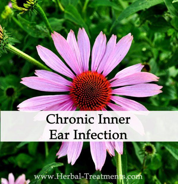 Herbal Medicine for Chronic Inner Ear Infections