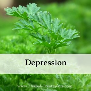 Herbal Medicine for Depression