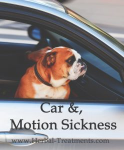 Herbal Treatment For Car Sickness, Motion Sickness in Dogs