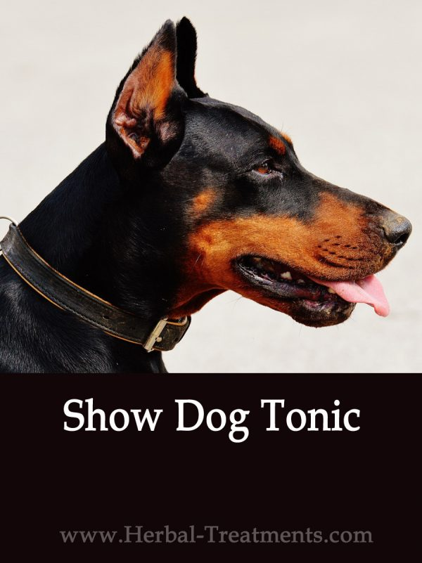 Show Dog Herbal Tonic for Dogs