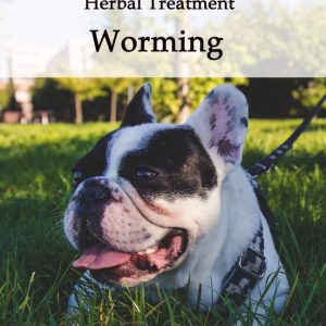 Herbal Worming Tonic for Dogs