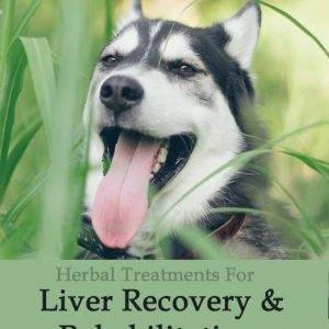 Herbal Treatment - Liver Recovery and Rehabilitation Tonic for Dogs