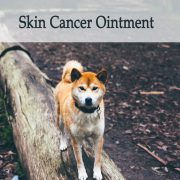 Herbal Treatment for Cancer - Skin Cancer Ointment for Dogs