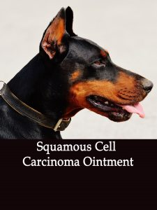 Herbal Treatment for Cancer - Squamous Cell Carcinoma Ointment for Dogs