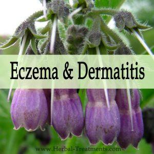 Herbal Medicine for Eczema and Dermatitis