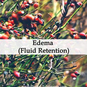 Herbal Medicine for Edema (Fluid Retention)