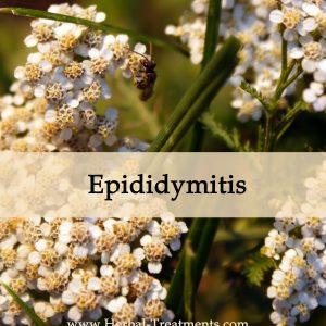 Herbal Medicine for Epididymitis