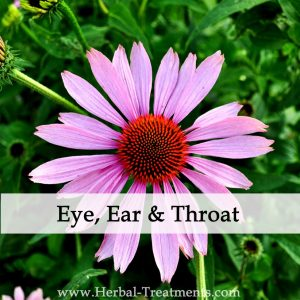 Herbal Treatments for Eye, Ear and Throat Conditions