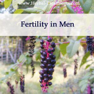 Herbal Medicine for Fertility in Men