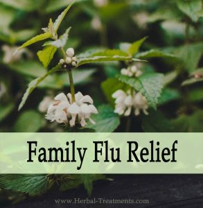 Herbal Medicine for Family Flu Relief & Recovery