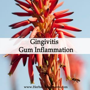 Herbal Medicine for Gingivitis or Gum Inflammation