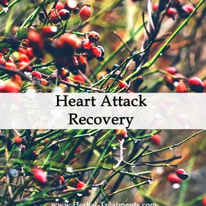 Herbal Medicine for Heart Attack Recovery