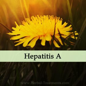 Herbal Medicine for Hepatitis A - Liver Recovery