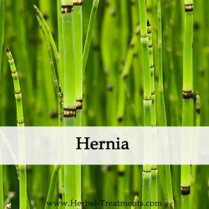 Herbal Medicine for Hernia Herbal Treatment