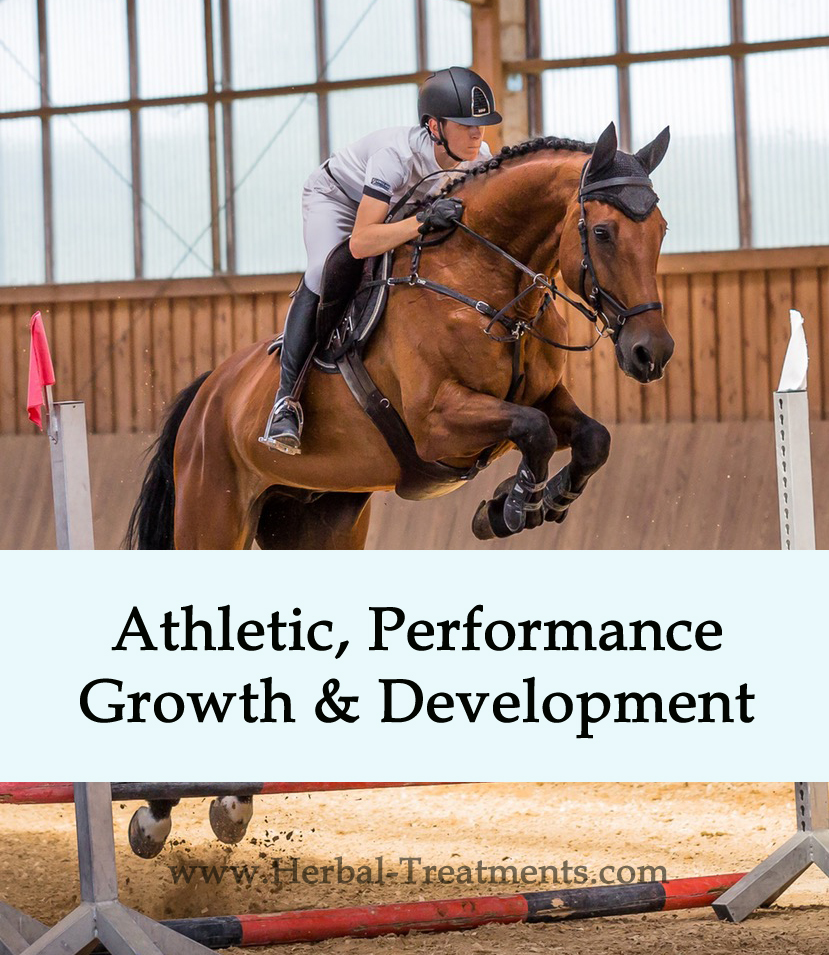 Herbal Treatments for Equine Athletic Performance, Growth and Development Support