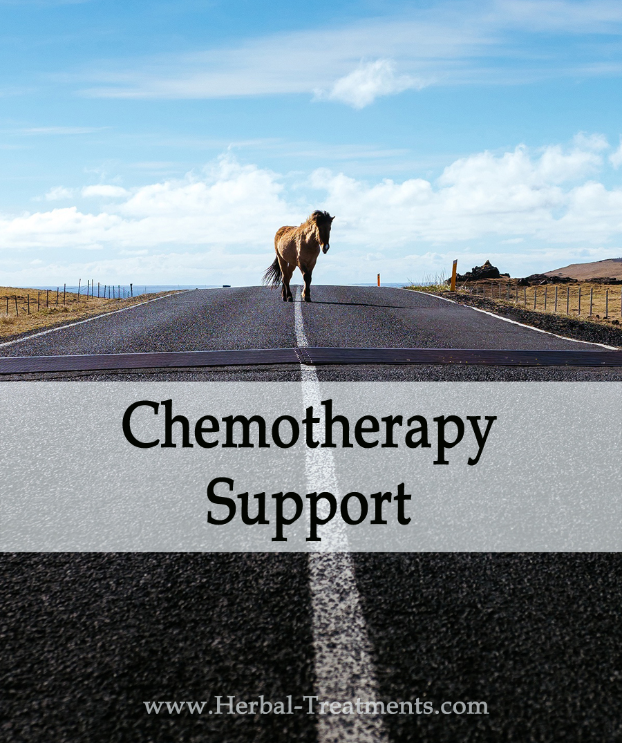 Herbal Treatment For Chemotherapy Side-Effects & Recovery in Horses