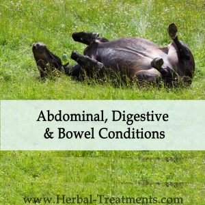 Herbal Treatments for Equine Abdominal, Digestive and Bowel Conditions