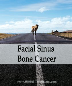Herbal Treatment of Facial Sinus Bone Cancer in Horses