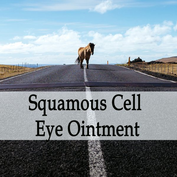 Herbal Treatment -Squamous Cell Carcinoma Ointment (Use Around the Eyes) for Horses