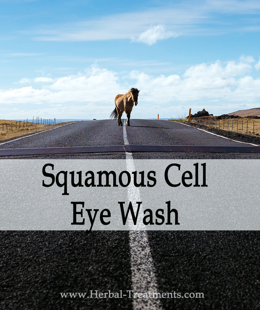 Herbal Treatment - Squamous Cell Eye Wash for Horses