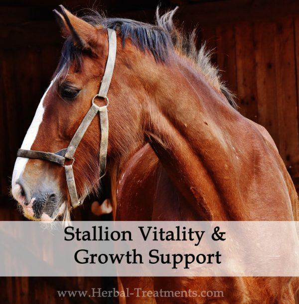 Stallion Vitality and Growth Herbal Tonic